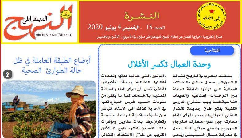 العدد 15 من النشرة الإلكترونية الإخبارية